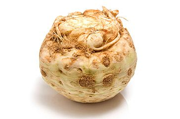 Fields of Plenty: Celery Root (Celeriac)
