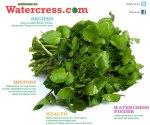 watercress2