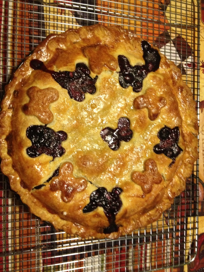 Joe's Blueberry Pie